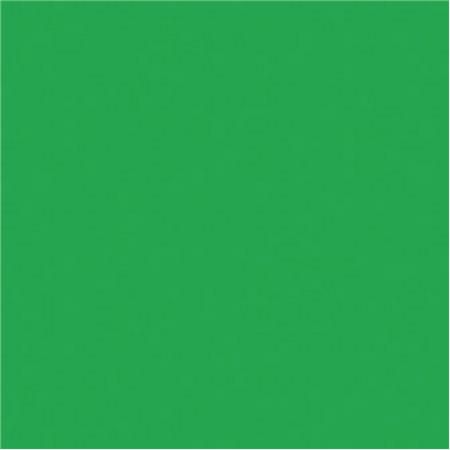 Rosco Roscolux Moss Green 20x24 Color Effects Lighting Filter