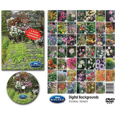 Savage Digital Backgrounds DVD: Picture 1 regular