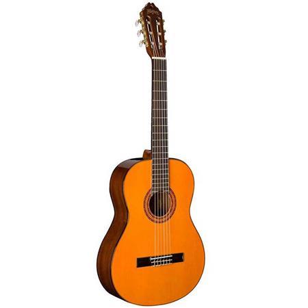 Washburn Classical SeriesC5-WSH-A-U Acoustic Guitar Brand New in Box