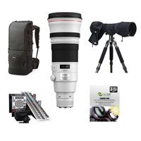 Canon EF 500mm f/4L IS II USM Image Stabilizer Telephoto ...