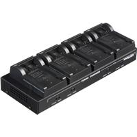 Dolgin Engineering TC40-CAN 4-Position DPM Charger (120-2...