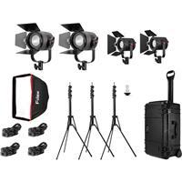K411 4-Light Pro Plus Travel Kit, Includes 2x P180E Light...