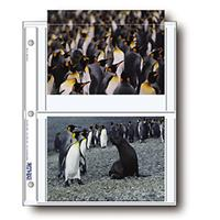 """Print File Photo Pages Holds Four 5x7"""" Prints, Pack of 500"""