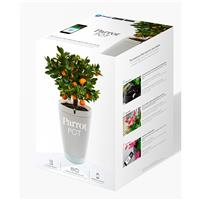 Parrot Flower Power Self Watering Pot and Plant Sensor, W...
