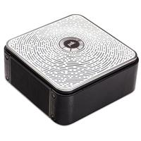 Polk Audio Camden Square Portable and Sharable Bluetooth ...