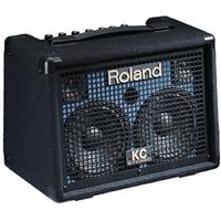 Roland KC-110 3-Channel Battery-Powered Stereo Keyboard A...