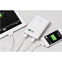Snow Lizard SLPower 11 Portable Charger, 11000mAh Capacit...