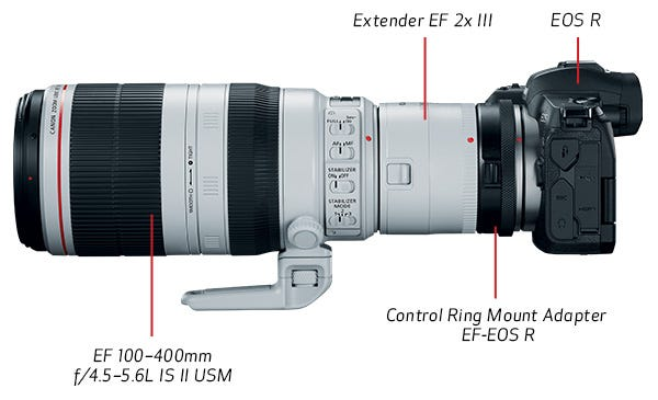 f/8 and f/11 Compatible in All AF Areas