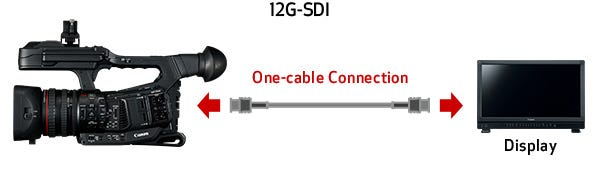12G-SDI, Genlock SMPTE Time Code and Other Terminals