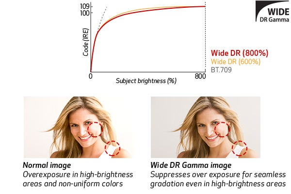 Wide DR Gamma (800%) Support