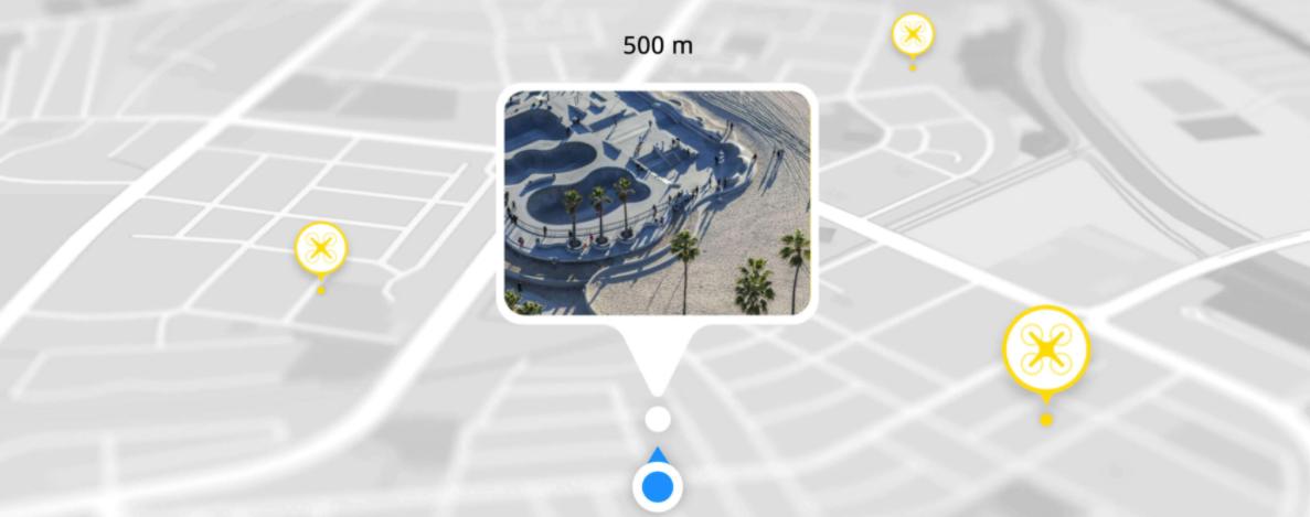 mini 2 trip map