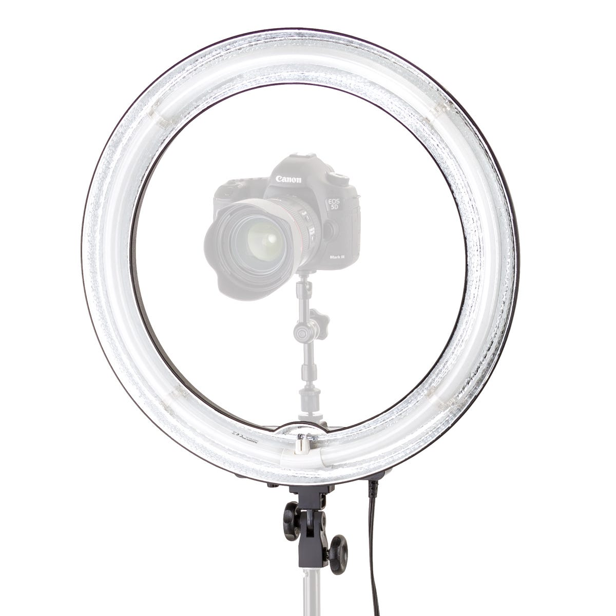 Flashpoint 19 Quot Fluorescent Ac Powered Ring Light Fp Lcf Ring