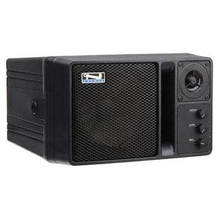 Anchor Audio AN-130 Powered Speaker Monitor with 1 Wireless Receiver, Black