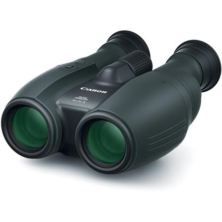 Canon 10x32 IS Image Stabilized Porro Prism Binocular with 6.0 Degree Angle of View, Black