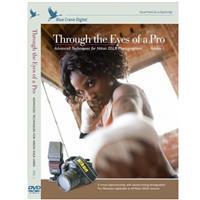 Blue Crane Digital DVD: Through the Eyes of a Pro - Advanced Techniques for Nikon DSLRs - Volume 1 image