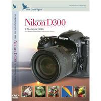 Blue Crane Tutorial DVD, Introduction to the Nikon D300 image