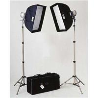 DL-2000 Everlight Kit, with Two 1000 Watt Quartz Halogen Heads, Stands, Softboxes, Connectors, & Product picture - 220