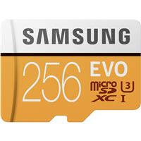 Deals on SAMSUNG EVO 256GB microSDXC Flash Card + Adapter