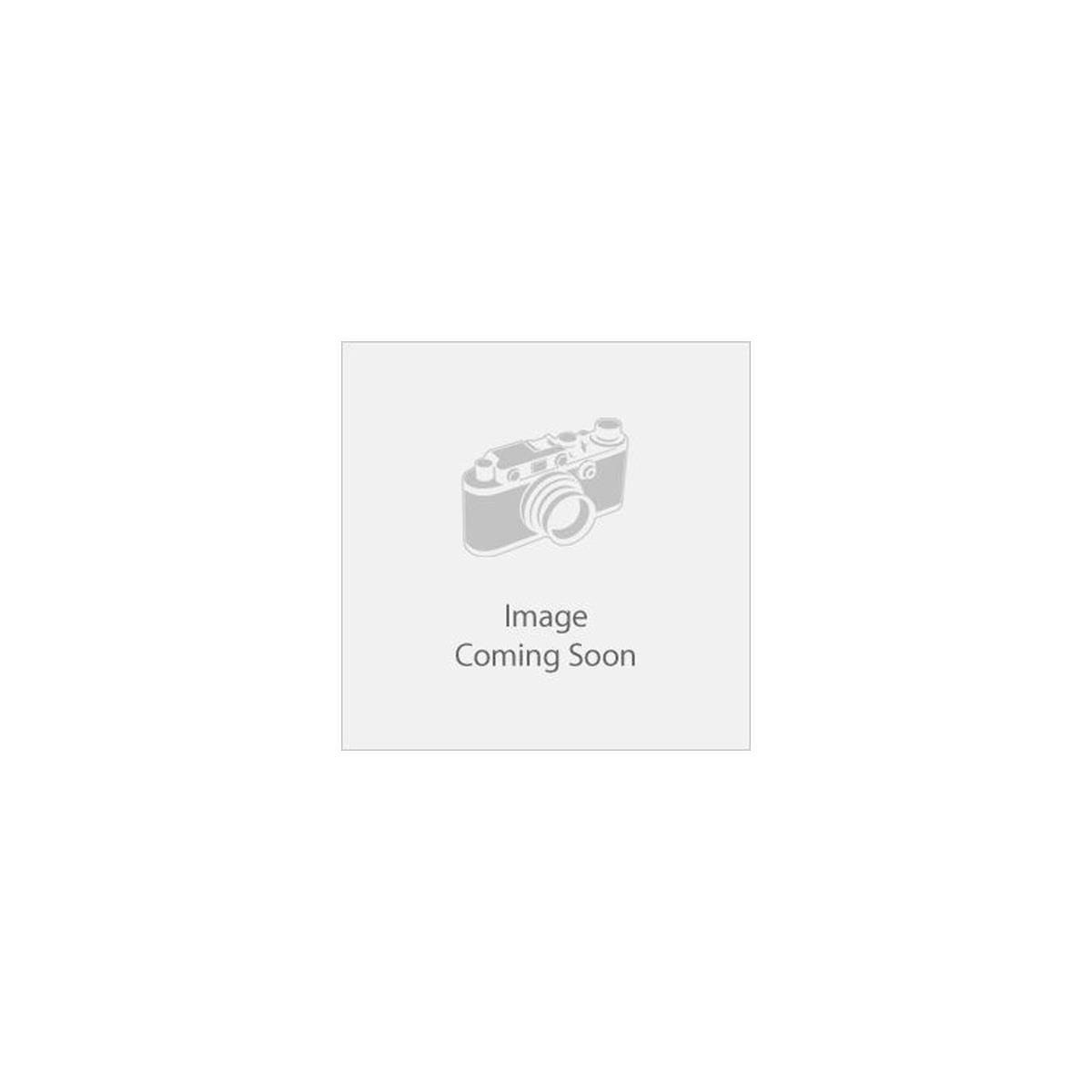Sony Alpha a6100 Mirrorless Digital Camera Body - With Audio